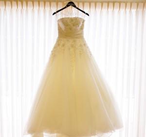 Erin Fairchild Girl Gone Veggie Wedding Dress