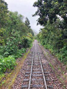 Views aboard PeruRail Sacred Valley Train to Machu Picchu