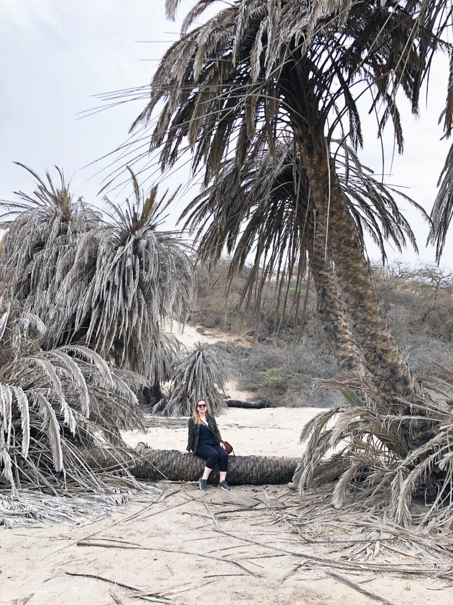 Hotel Paracas Venturia Desert Adventure Peru - Her Heartland Soul