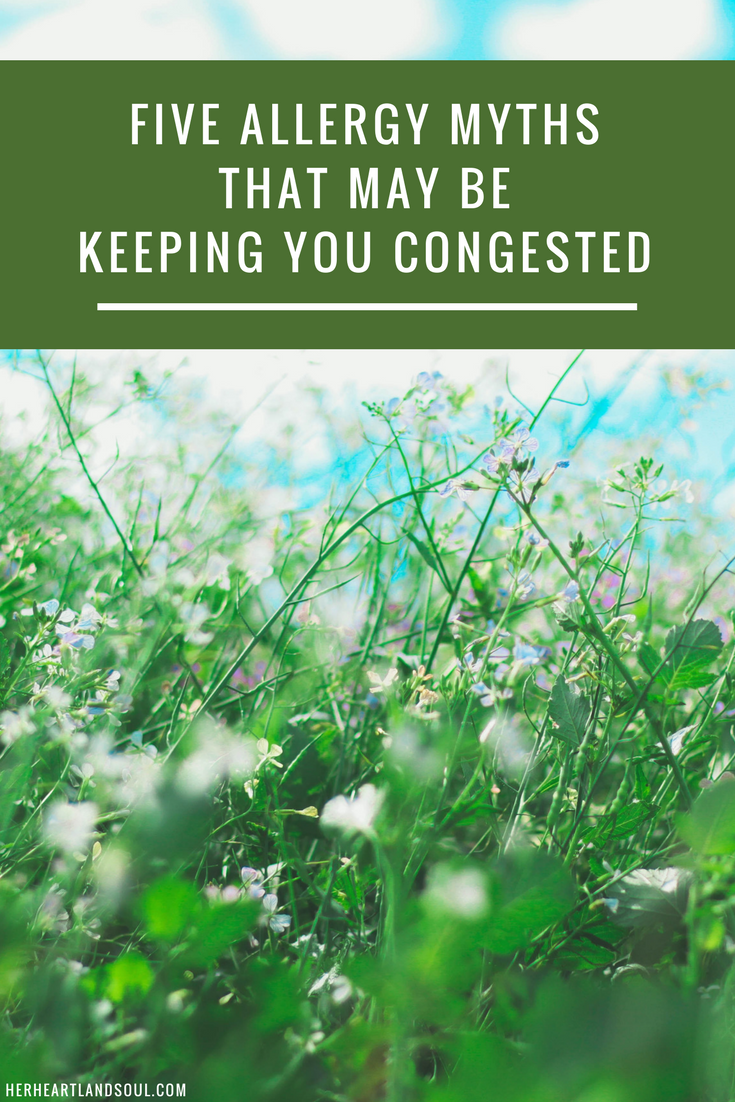 5 Allergy Myths that may be keeping you congested Her Heartland Soul
