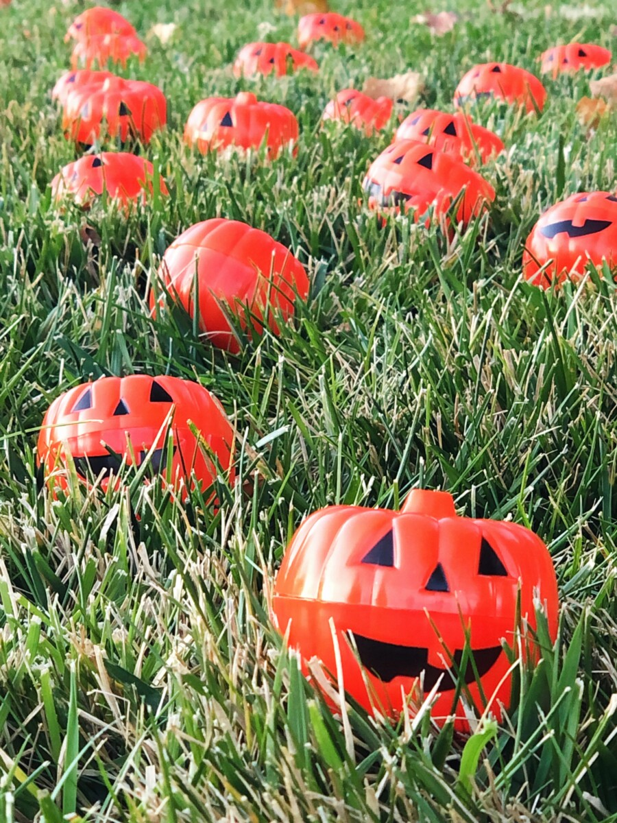 Pick Your Own Pumpkin Patch Safe Halloween Trick or Treating Idea - Her Heartland Soul