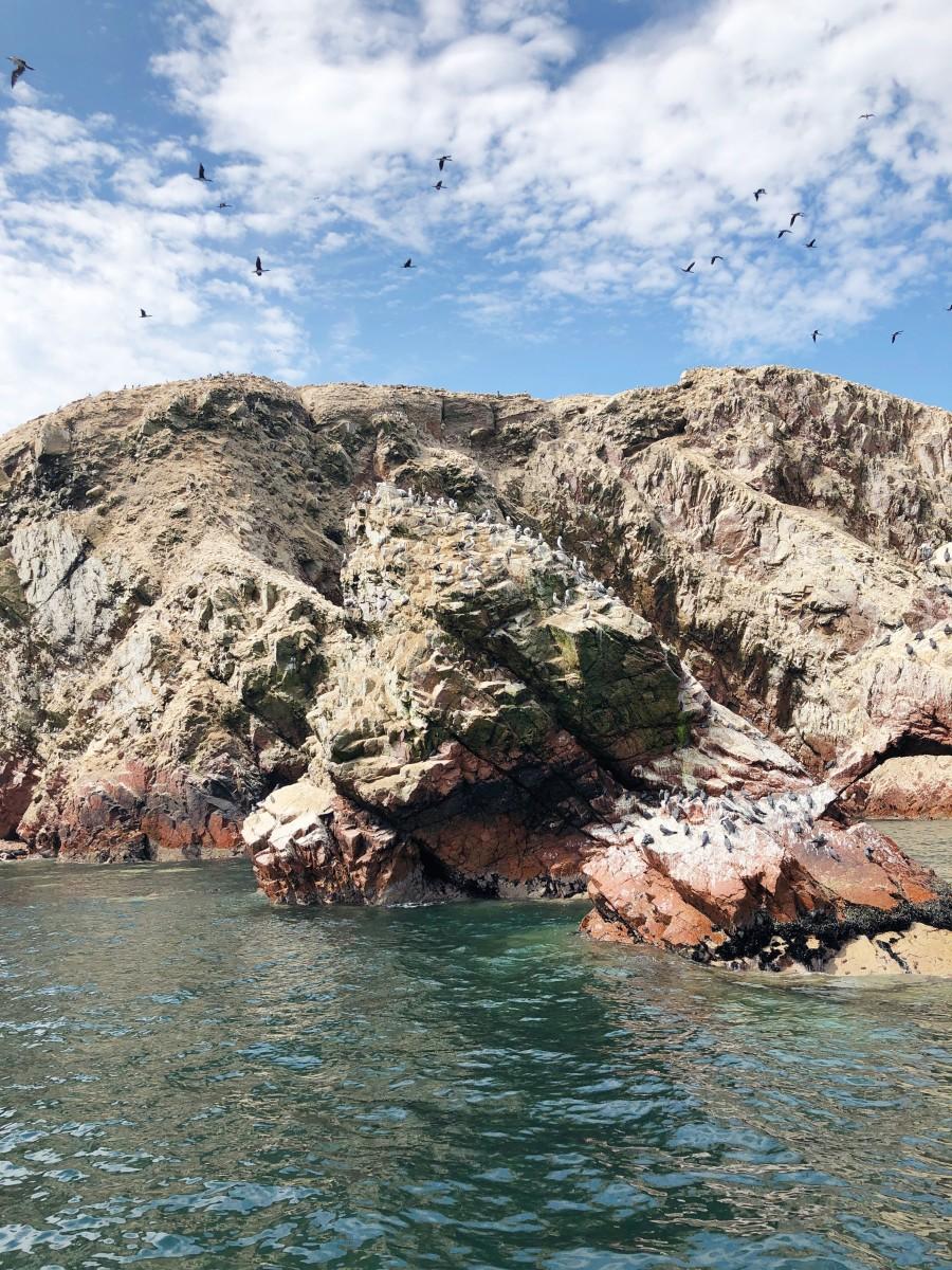 Ballestas Islands Paracas - Peru - Her Heartland Soul