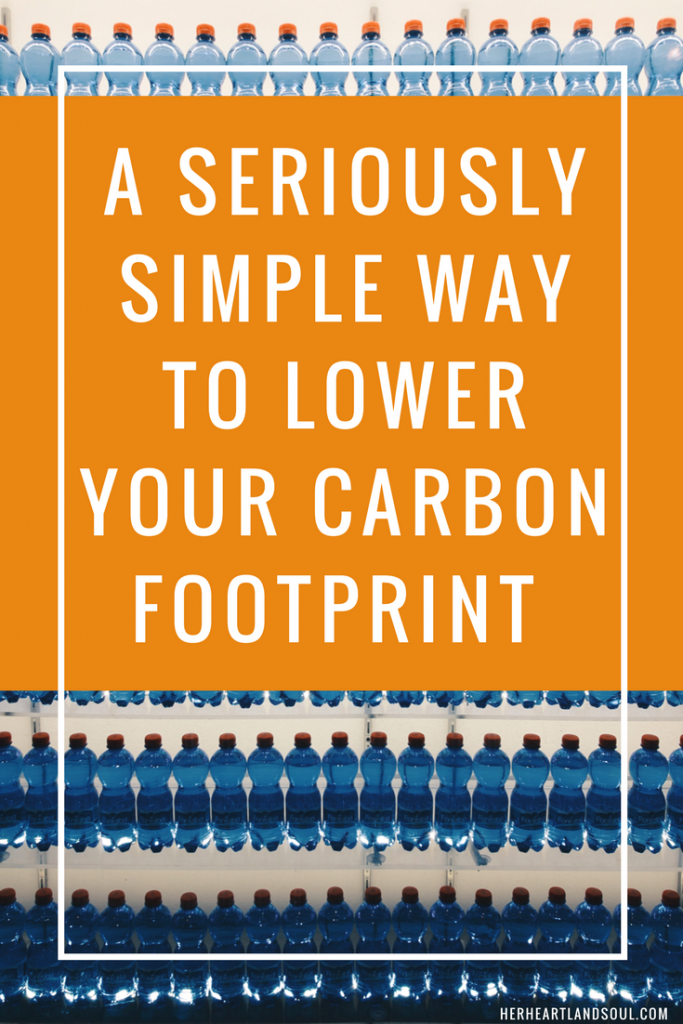 One thing to start doing today to lower your carbon footprint