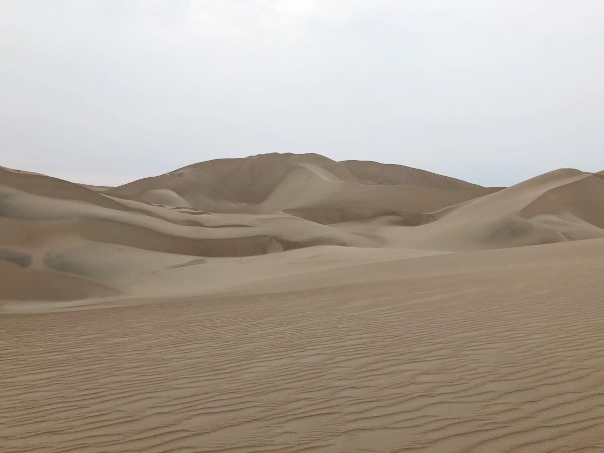 Paracas Reserve and Huacachina Sand Dunes - Peru - Her Heartland Soul
