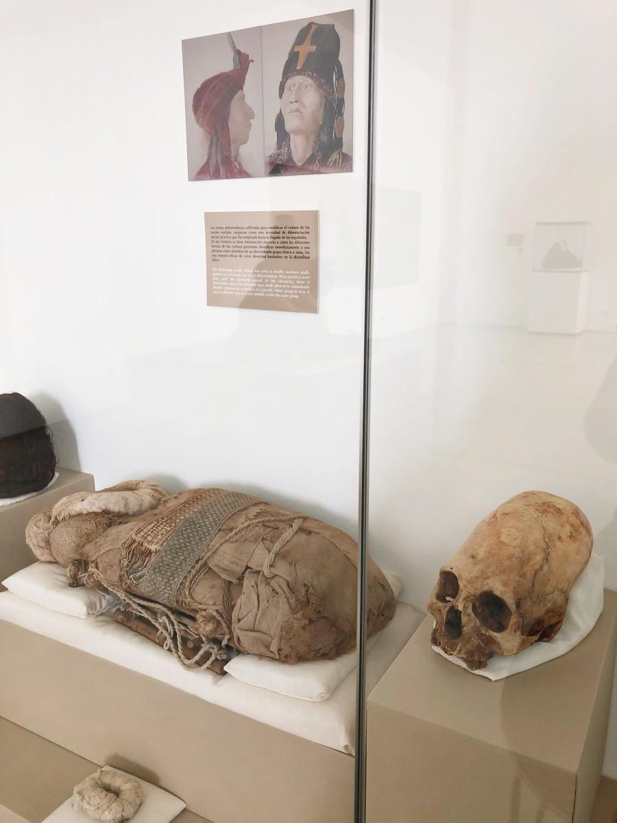 "Museo de Sitio ""Julio C. Tello"" de Paracas Mummy Bodies- Paracas Peru - Her Heartland Soul"