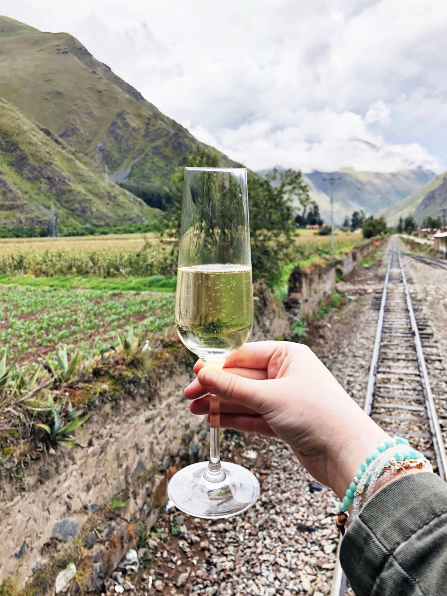 Girl holding wine glass on train to Machu Picchu