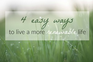 4 easy ways to live a more renewable life