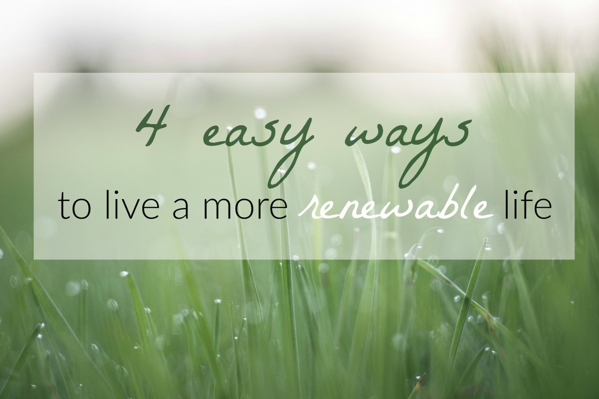 4 easy ways to live a more renewable life her heartland soul