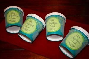 eCreamery Ice Cream Her Heartland Soul Erin Fairchild 5