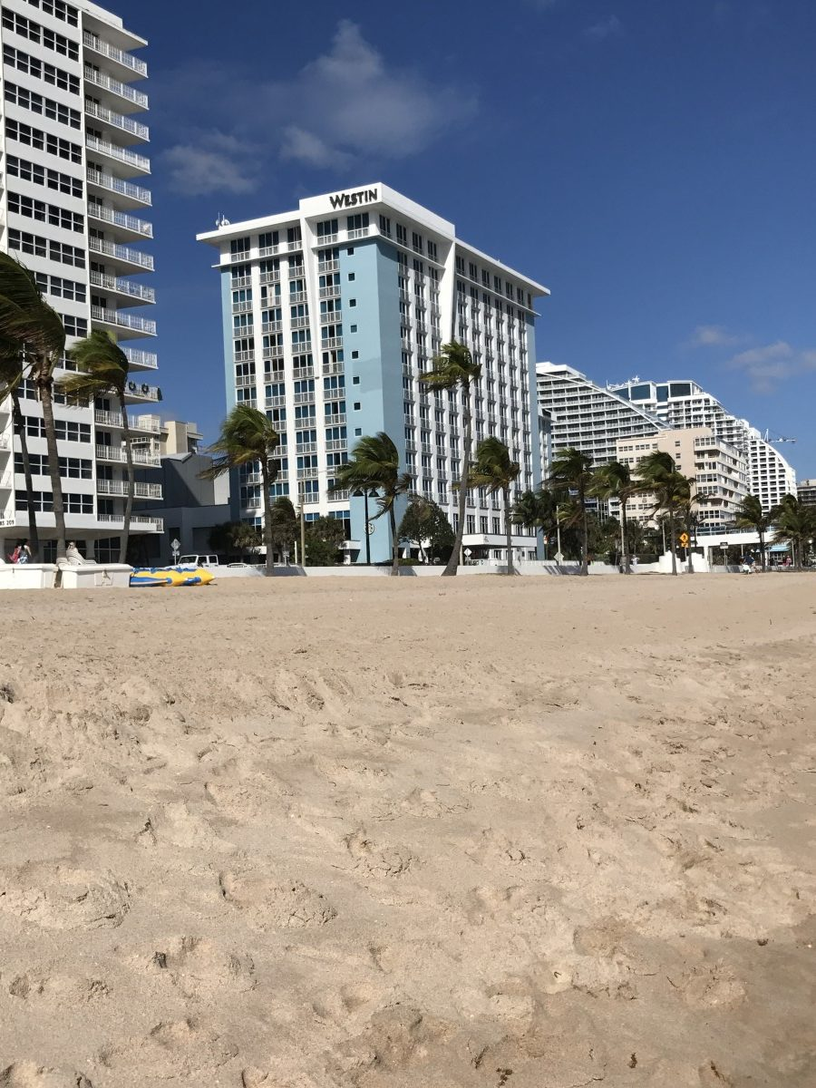 The Westin Fort Lauderdale Beach Resort Her Heartland Soul