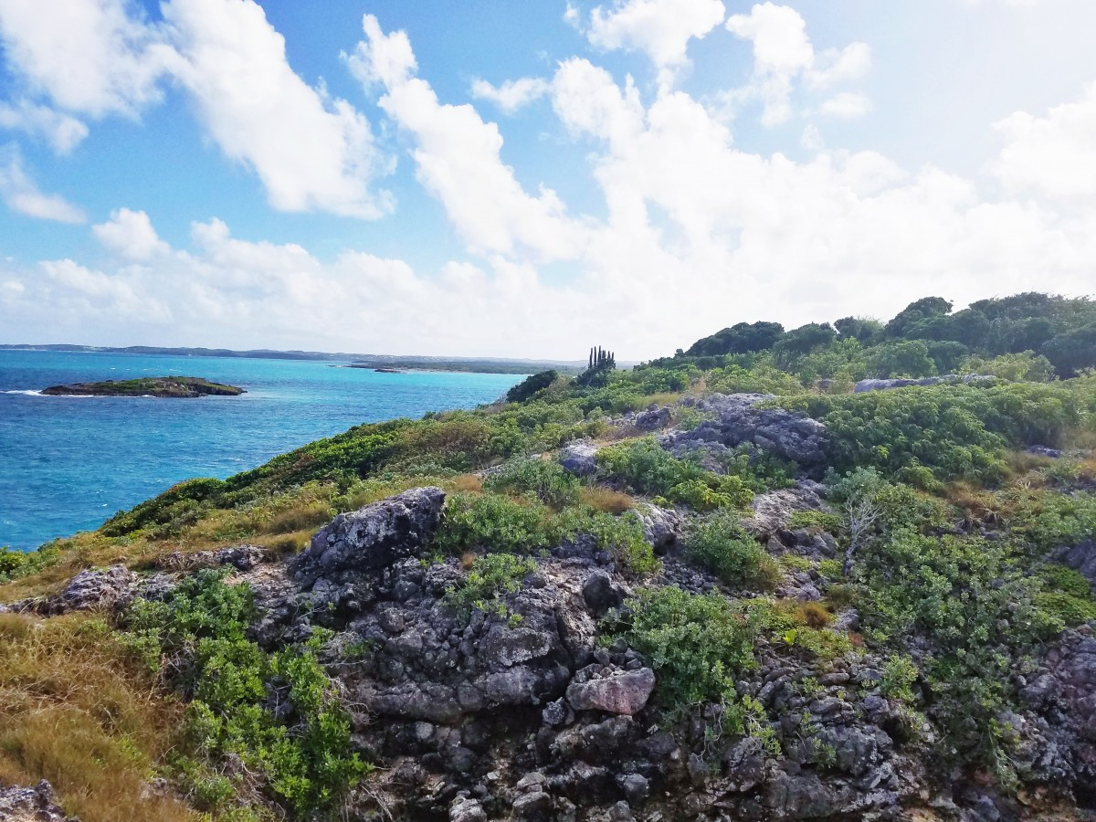 Hiking in Antigua Her Heartland Soul