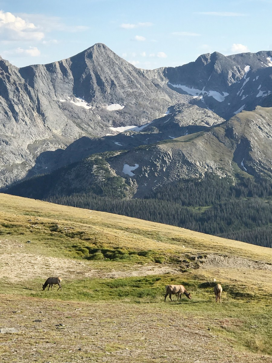 Rocky Mountain National Park Estes Park Colorado Her Heartland Soul