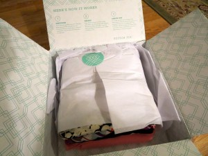 StitchFix Girl Gone Veggie Erin Fairchild