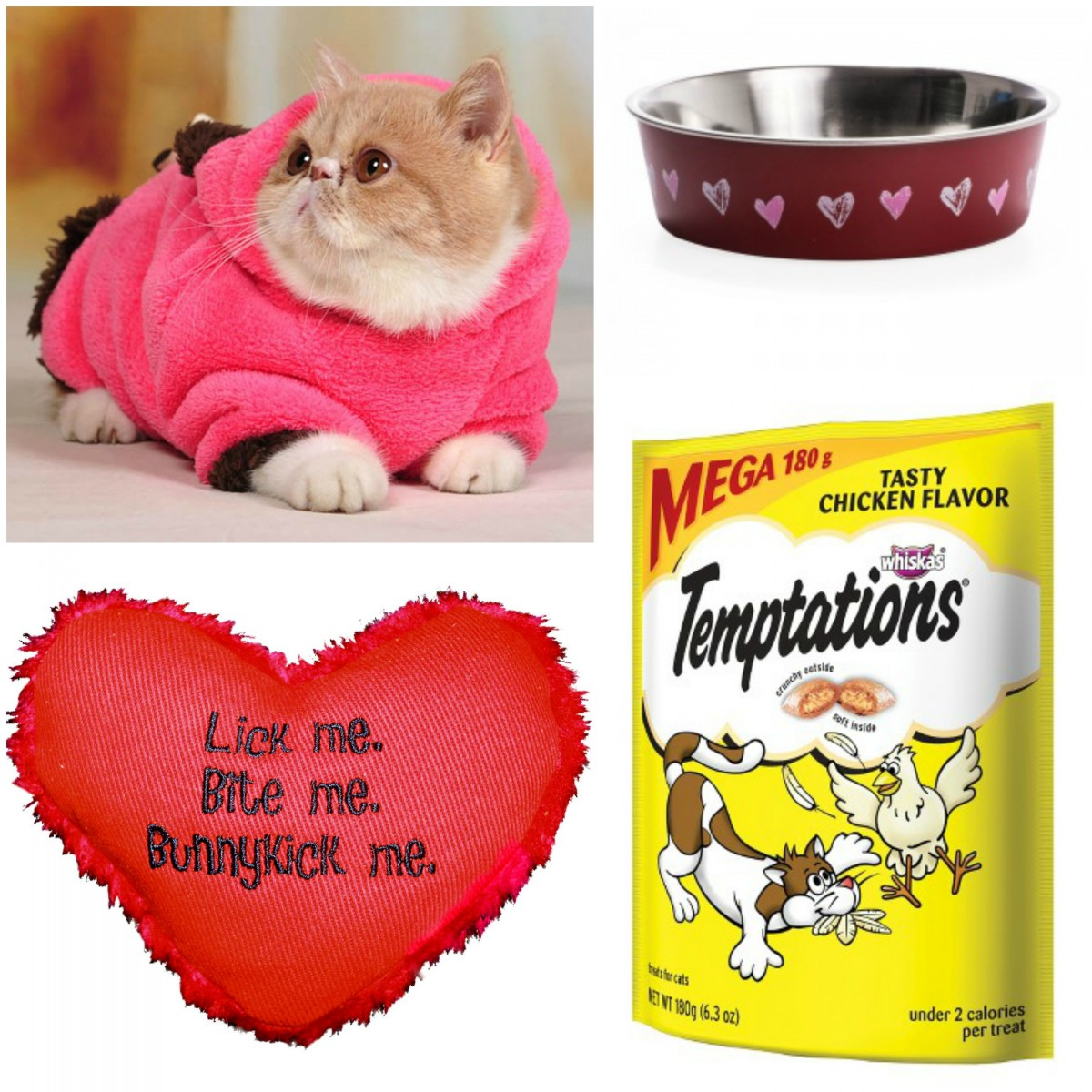 Valentine's Day Presents for Your Cat Her Heartland Soul