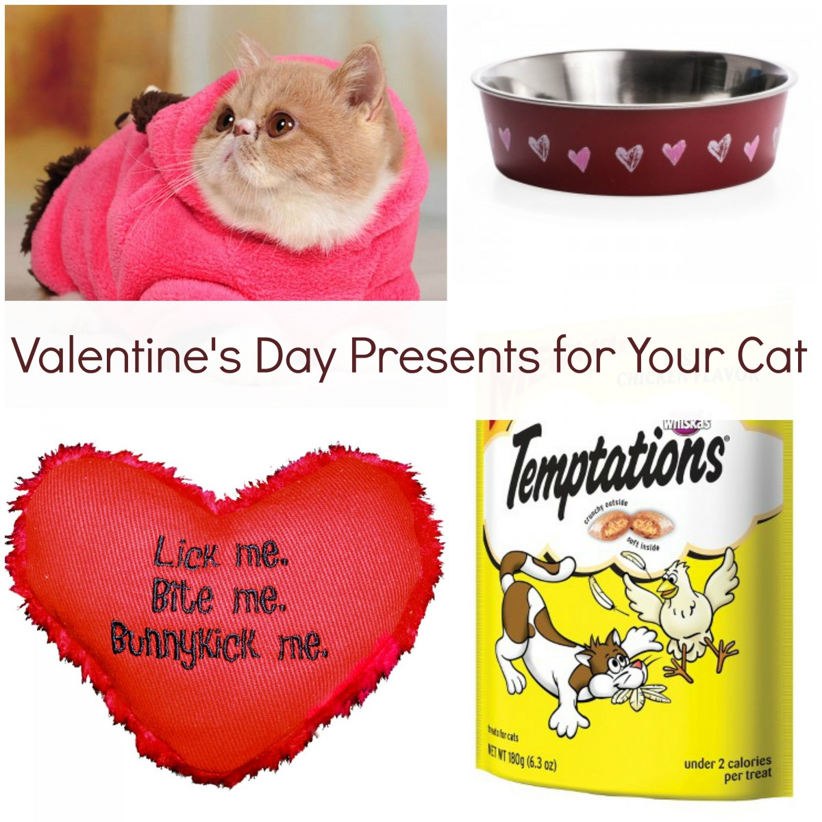 Valentine's Day Presents For Your Cat - Her Heartland Soul