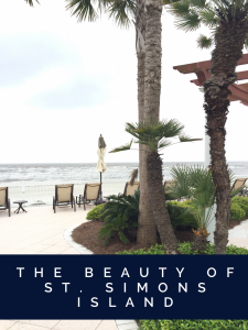 The Beauty of St. Simons Island