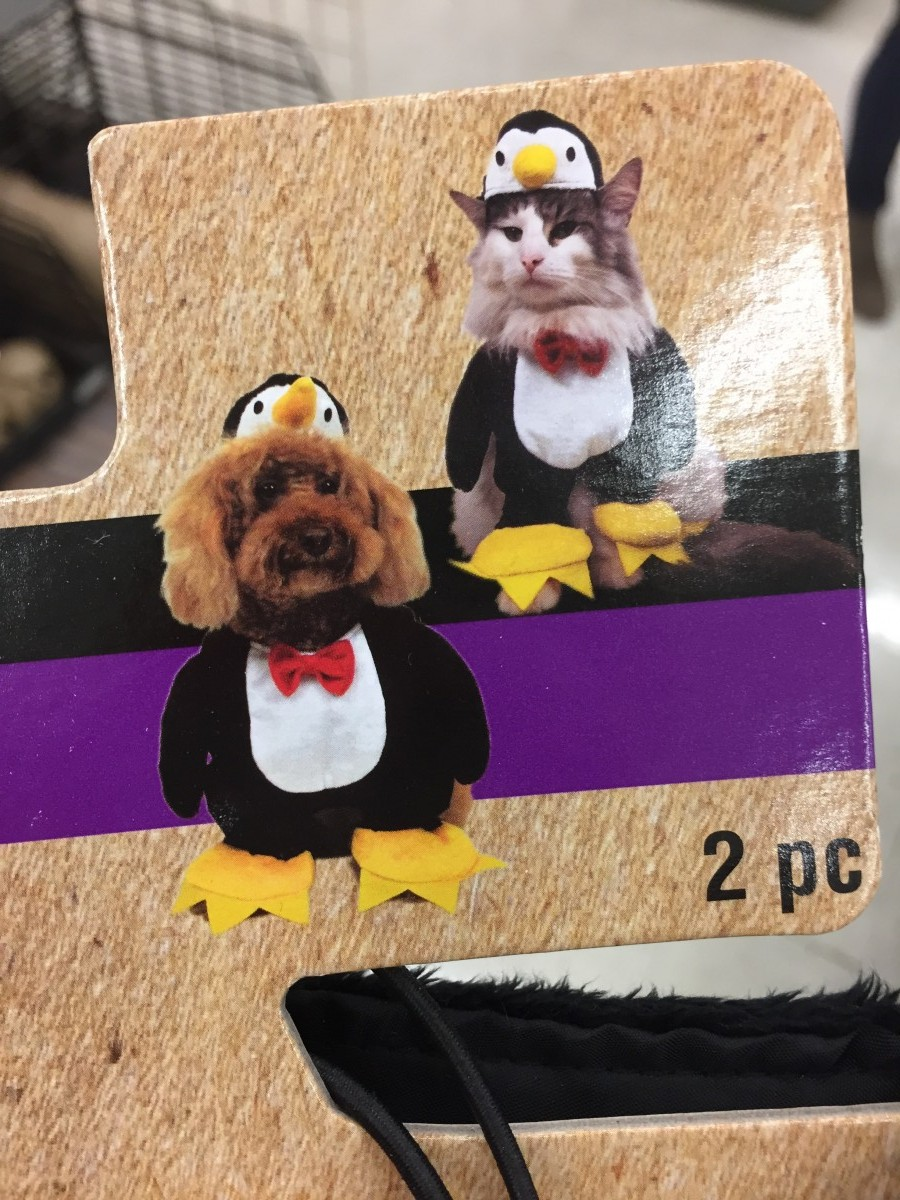 Penguin Cat Costume Her Heartland Soul