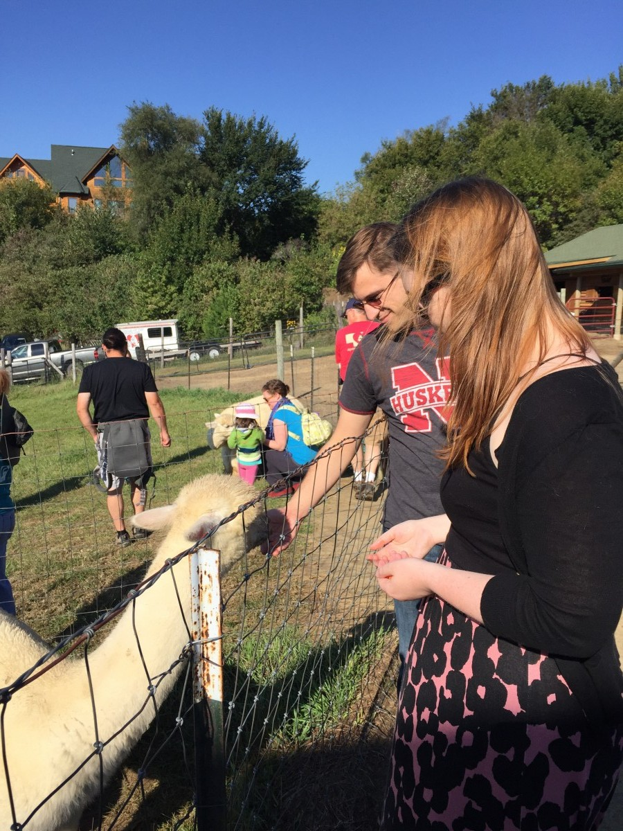 Alpacas of the Heartland Omaha Nebraska Her Heartland Soul