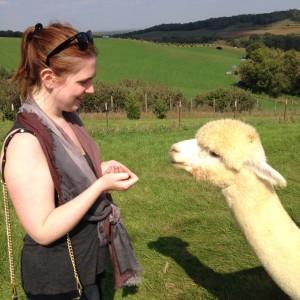Alpaca 6 Erin Fairchild Her Heartland Soul